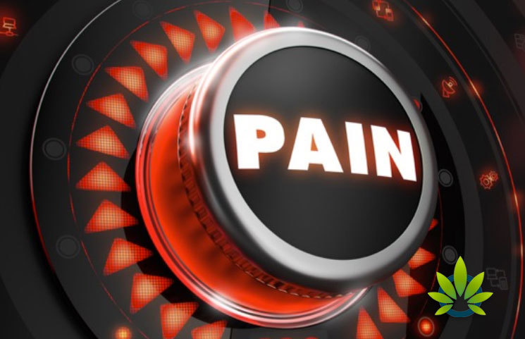 Pain Management Is Most Common Use of CBD in US Per Newest User Poll