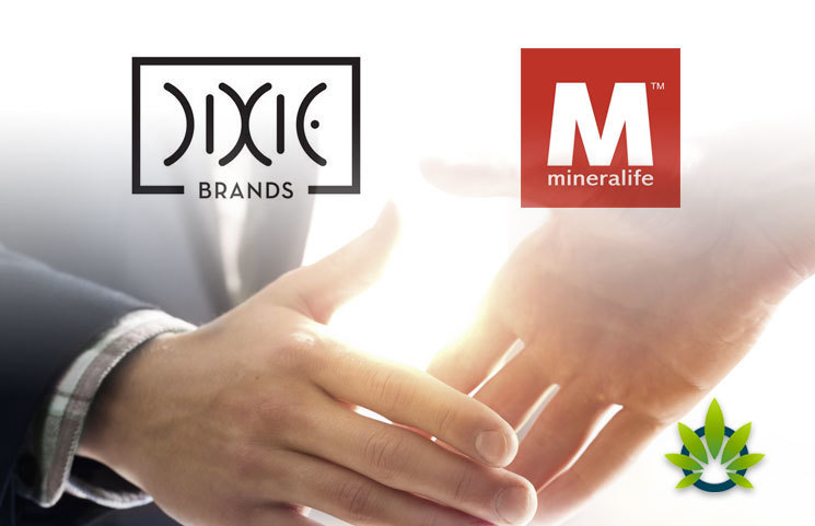 Partnership-Between-Dixie-Brands-and-Mineralife-for-CBD-Production