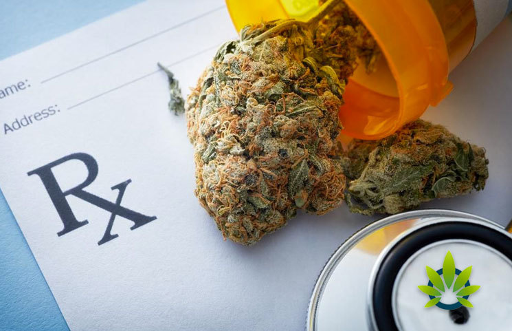 Petition by the Medical Marijuana 2020 Campaign, an Initiative for Mississippi General Elections