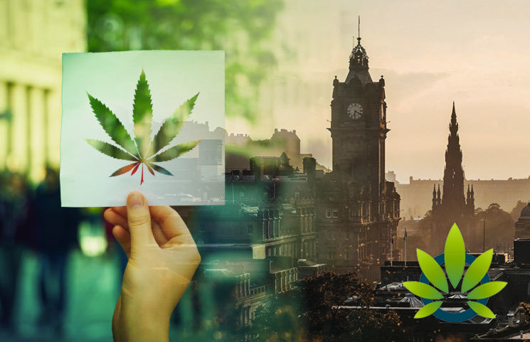 New Scotland Survey Shows Support for Cannabis Legalization at Nearly 50%