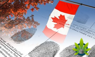 Cannabis Pardon Progress of Record Expungement in Canada is Slow Than Expected