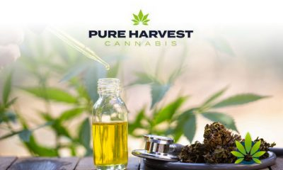 Prolific-Nutrition-becomes-Pure-Harvest-Hemp-Inc-a-fully-owned-subsidiary-of-PHCG