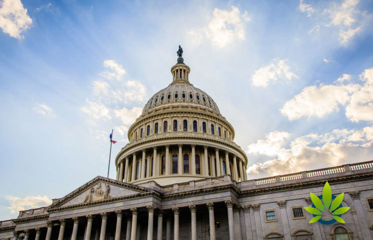 Republican Congressman Brings Two CBD Products to Hearing, Shows Hemp vs Marijuana Differences
