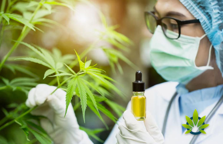 Science-Shows-the-Truth-of-Hemp-and-CBD-Benefits