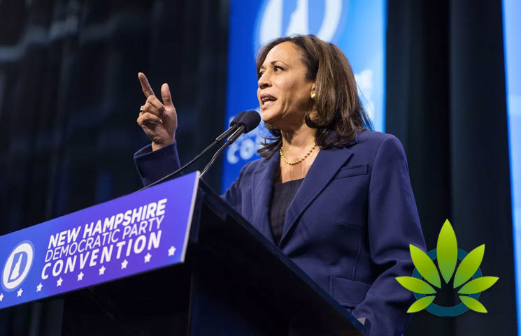 Senator Kamala Harris' New Criminal Justice Policy has Cannabis Legalization as a Key Component
