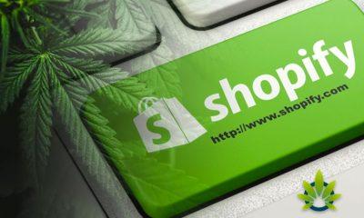 Shopify Introduces CBD-Friendly Commerce Platform for Cannabis Businesses