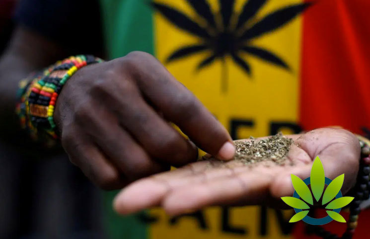 South Africa's Cannabis Legalization Movement on the Cusp of Happening