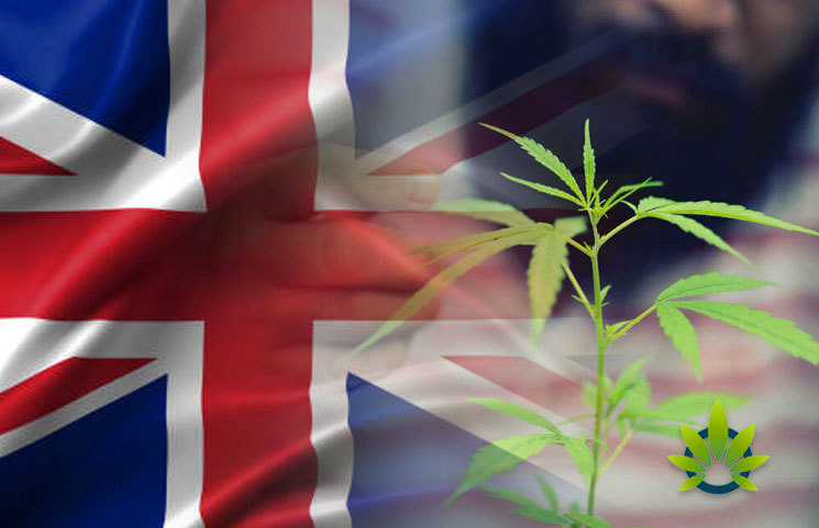 Survey-Shows-British-Perception-of-CBD