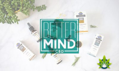 TCHC-Announces-Additional-Products-Coming-to-Their-Better-Mind-CBD-Line