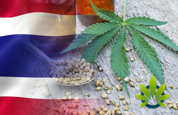 Thailand Green Lights Hemp CBD in Food, Cosmetics and Herbal Products