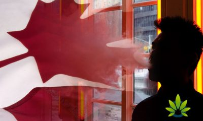 Vape-Related Illness Strikes Canada, Banning Vapes Adds Fuel to the Black Market?