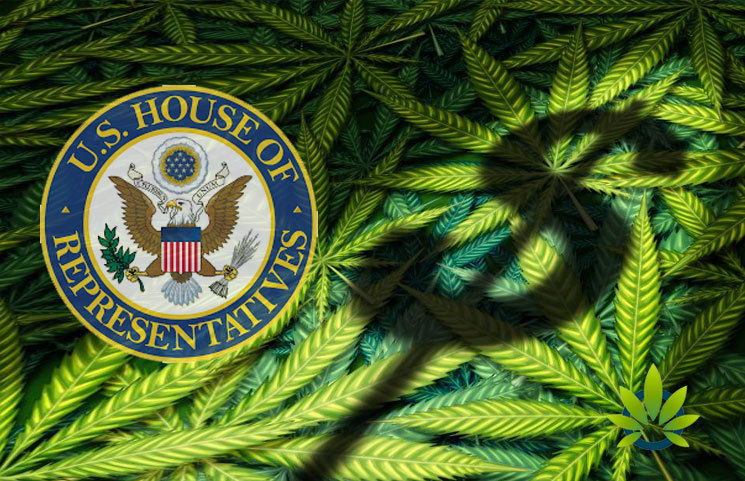 House of Representatives Validates SAFE Banking Act 2019: Updated Banking Synopsis for Legit Marijuana Businesses