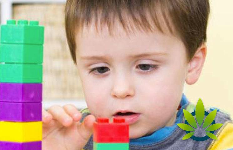 New Zynebra CBD Study Researches Sociobehavioral Symptom Management Effectiveness