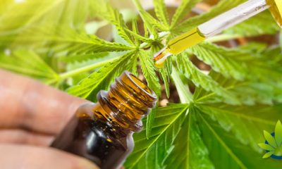 CBD Consumer Confusion is Rising as Multiple Product Types and Pricing Ranges Exist