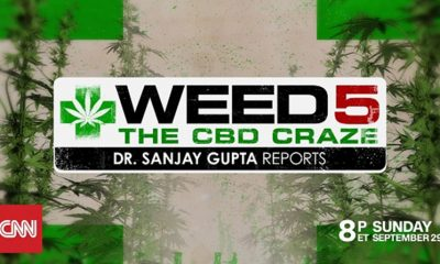 dr-sanjay-gupta-weed-5-the-cbd-craze-documentary