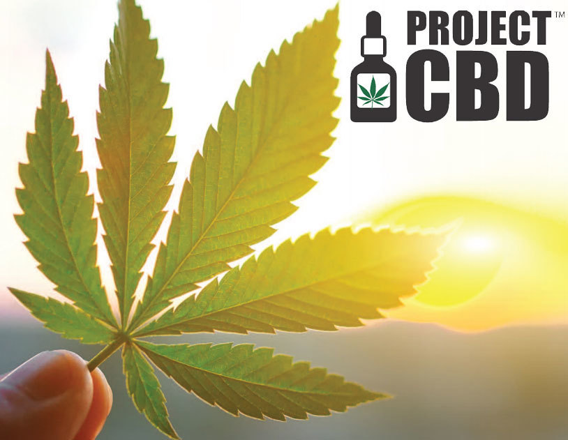 project-cbd-user-research-survey-2019