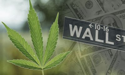 Wall Street Financial Experts Predict a Booming Cannabis Market in Years to Come