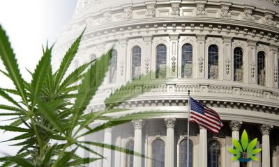 After White House Approval, Proposed Hemp Regulations Up for Public Comment Later Today
