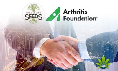 Arthritis Foundation and Tree of Life Seeds, a Maker of Hemp CBD Products, Partner