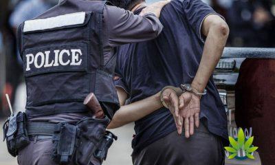 As Legalization Grows Across US, FBI Reports Increased Marijuana Arrests
