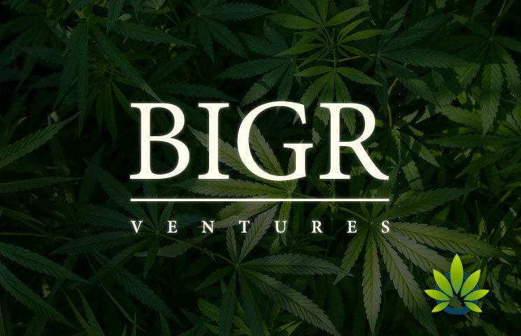 BIGR Ventures Invests $3 Million into RE Botanicals CBD Products Company