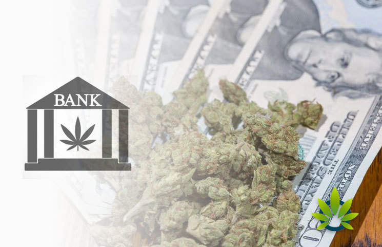 Banks-Less-Reluctant-to-Serve-Cannabis-Businesses