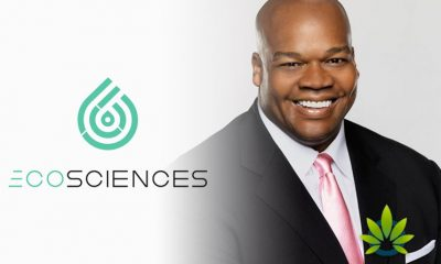 Baseball-Legend-Frank-Thomas-Partners-with-Eco-Sciences-to-Launch-CBD-Pain-Cream