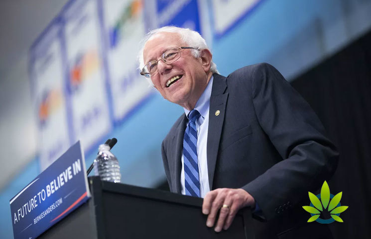 Bernie Sanders Aims to Legalize Marijuana, Pushing to Invest in Minorities with Tax Revenue