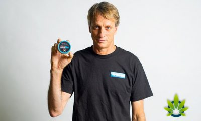 Birdhouse CBD Balm for Athletes by 1933 Industries to Launch with Tony Hawk