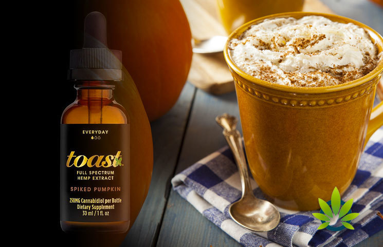 CBD Company (Toast) Debuts Its First Anti-Stress Anxiety CBD Oil with Pumpkin Spice Flavor