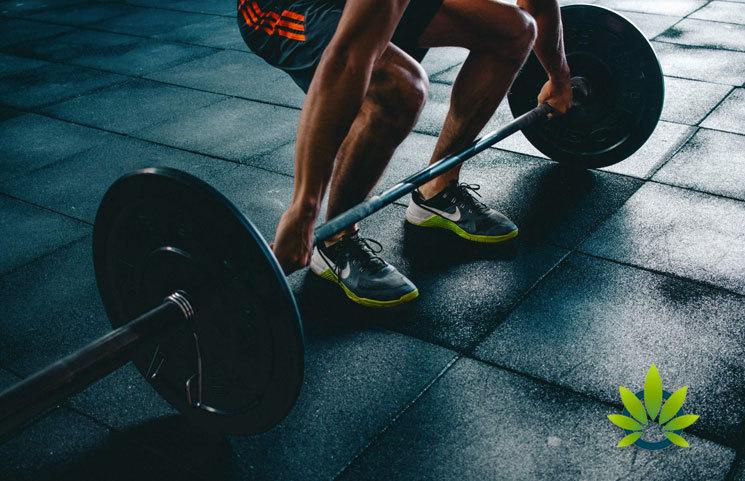 CBD-Post-Workout