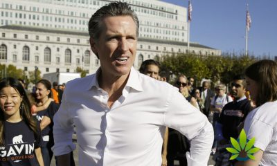 California Governor Gavin Newsom Inks Ten New Cannabis Business Bills