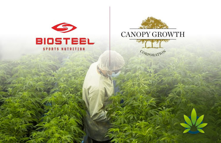 Canopy-Growth-Enters-Deal-with-BioSteel-for-CBD-Sports-Products