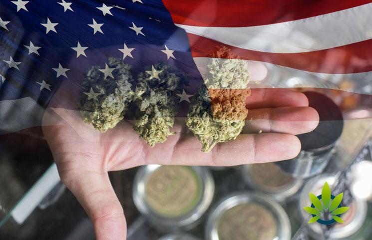 Cato-Institute-Survey-Over-Half-of-Americans-in-Favor-of-Drug-Decriminalization