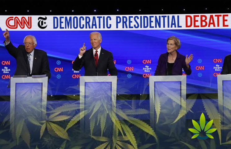 Democratic-Candidates-Show-Support-for-Opioid-Decriminalization-at-Presidential-Debate
