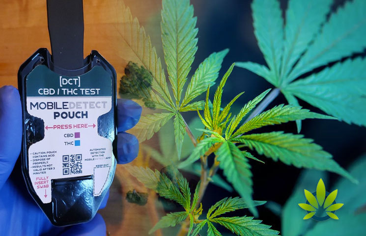 DetectaChem Releases New Field Test Kit to Differentiate CBD and THC