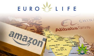 EuroLife Looks to Become the 'Amazon or Alibaba' of CBD Using Similar Strategic Frameworks