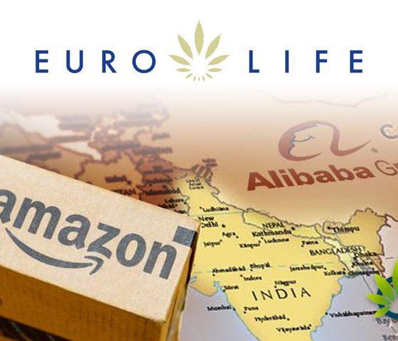 EuroLife Looks to Become the 'Amazon or Alibaba' of CBD Using Similar Strategic Frameworks