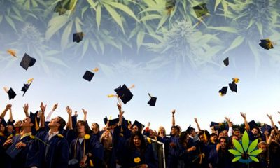 New Bill Looks to Help Students with Drug Convictions Still Get Financial Aid