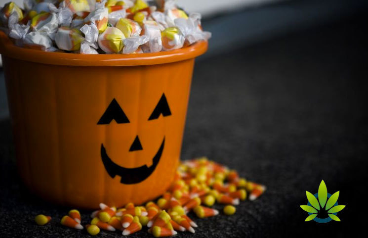Halloween Warnings Circulate on THC-Packed Cannabis Gummy Bear Edibles and Candies