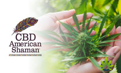 Hemp-Authority-Certification-issued-to-Company-CBD-American-Shaman