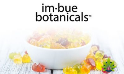 New All-Natural Transcend CBD Gummies by Imbue Botanicals Launches