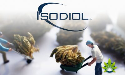 Isodiol and The Vitamin Shoppe Partner for New Iso-Sport Products