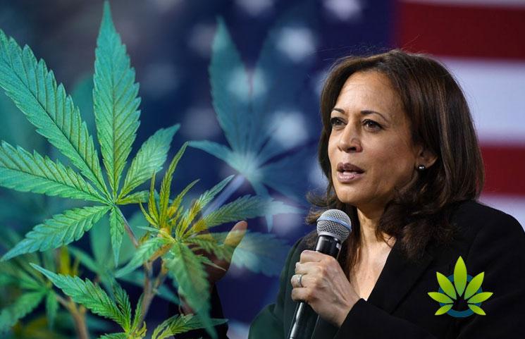 Kamala-Harris-Voices-Support-Regarding-Legalizing-Marijuana-Changes