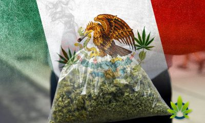 Mexico-to-Legalize-Marijuana