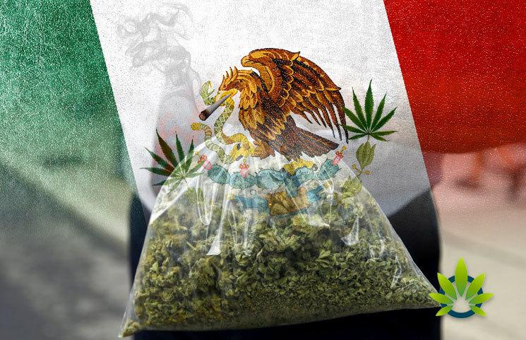 Mexico-to-Legalize-Marijuana