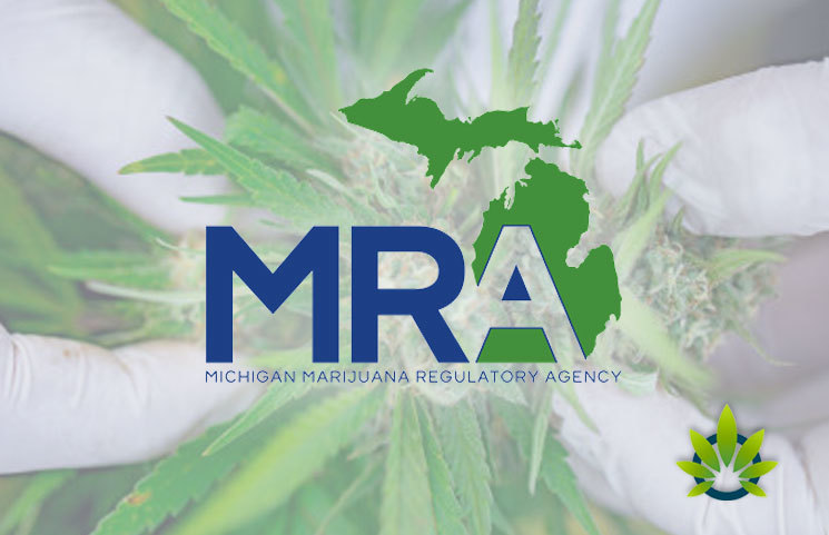 Michigan Regulators Issue Adult-Use Cannabis Business License Details