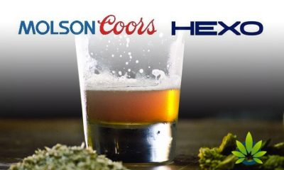 Molson-Coors-and-Hexo-Corp-to-Release-CBD