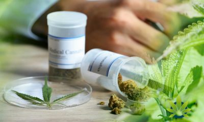 Mutiple New Studies: Patients Start Preferring Marijuana Over Prescription Medication