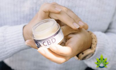 RESET Bioscience: Nano-Liposomal CBD Boosts Absorption by 80% for Greater Effect